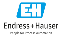 Endress+Hauser TOP Partner